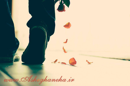 نگاه محمدرضا هدایتی قلب دلتنگی تنهایی