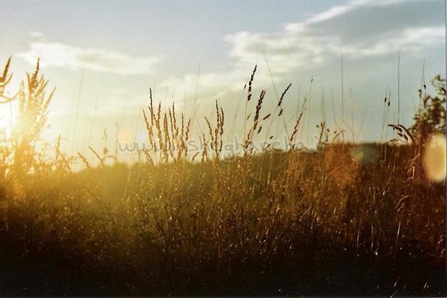 آسمان پول خورشید زندگی زیبایی