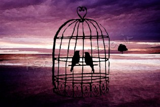 سیاوش قمیشی عشق قفس پرواز