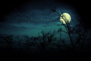 بی وفایی داریوش شب عشق مهتاب
