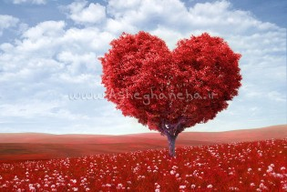 احساس بی وفایی شیوانا عشق معشوق