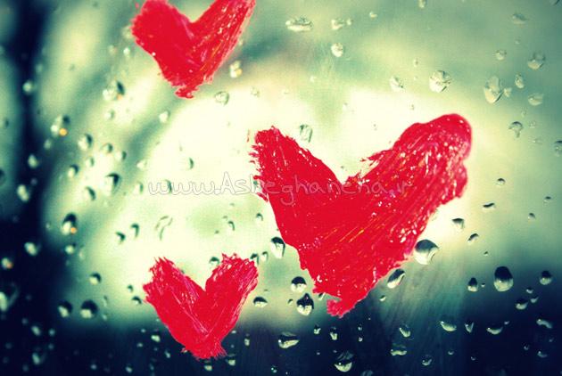 ذهن زندگی عشق لحظه