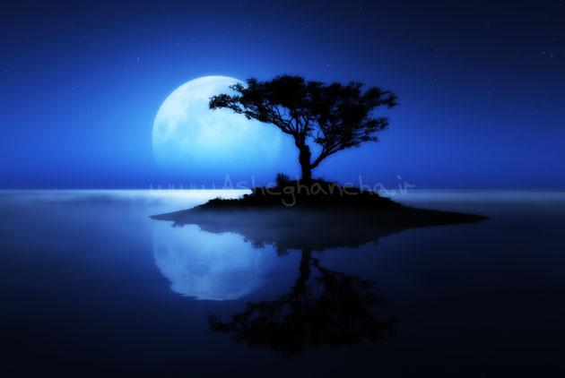 آغوش داریوش شب مهتاب